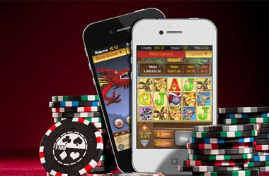 The Gambling World